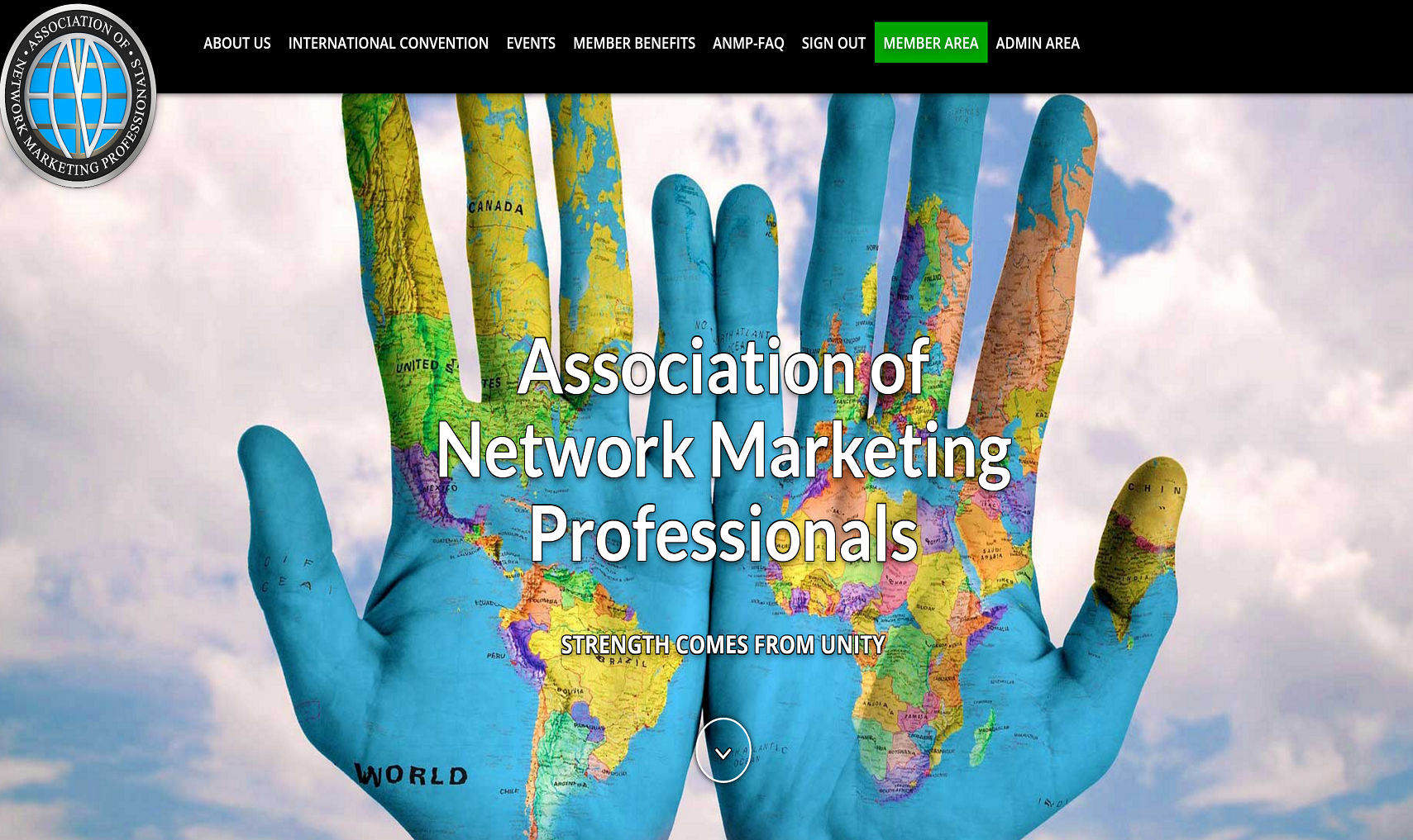 website design, branding and SEO for network marketing organization