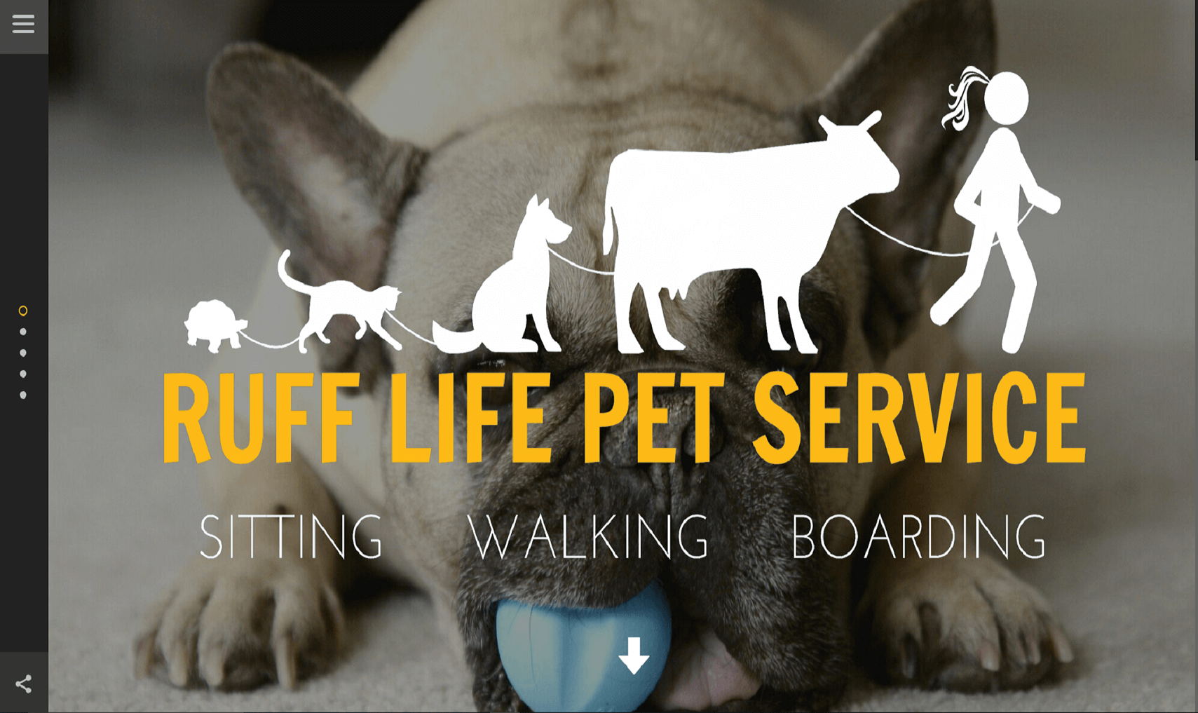 website design for dog walking pet services