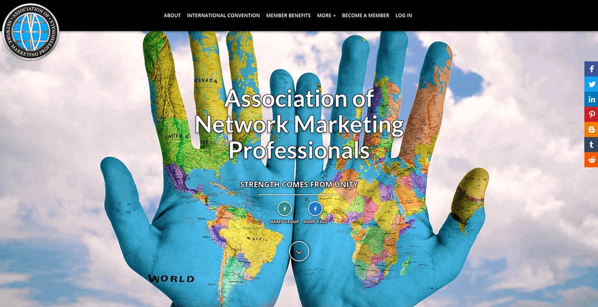 website design and branding services for network marketing organizations
