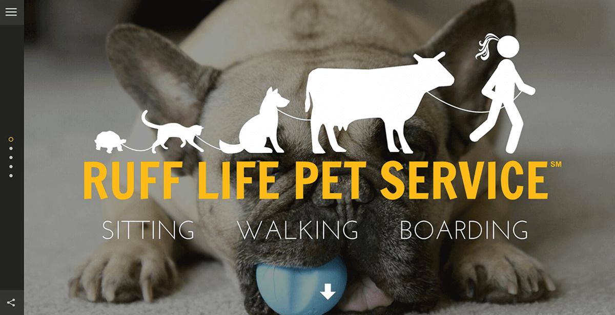 website design for dog walking pet services